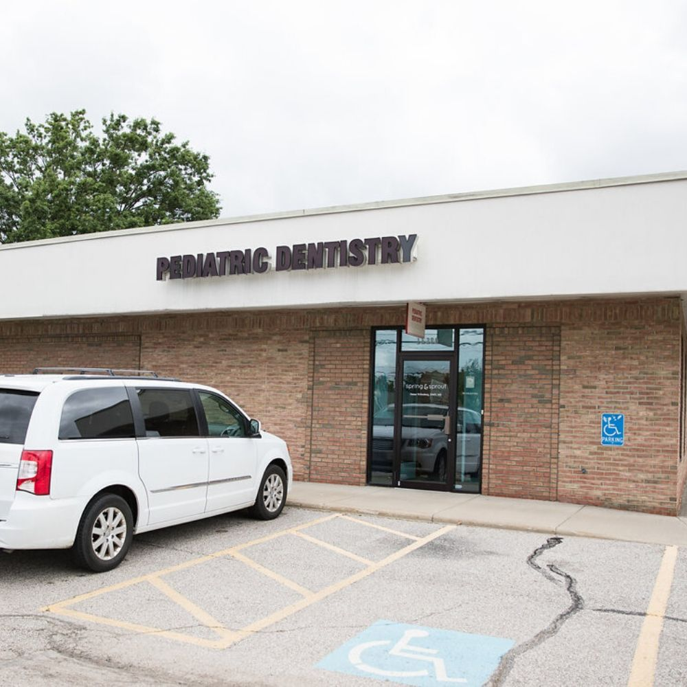 spring and sprout pediatric dentistry